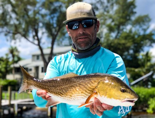 Gearing Up For Summertime Bradenton Fishing Charters