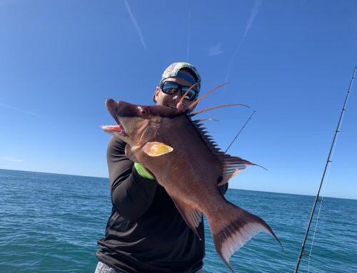 Fishing Charters Bradenton