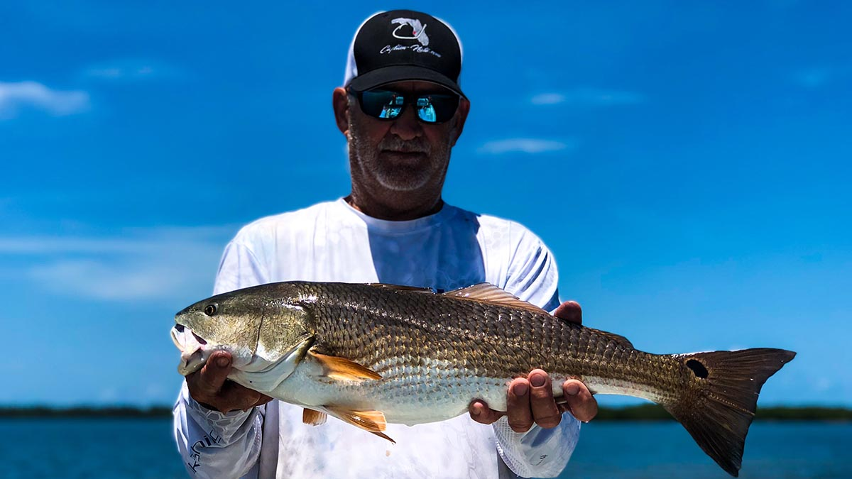 an angler with a redfish caught on a guided sarsaota fishing trip