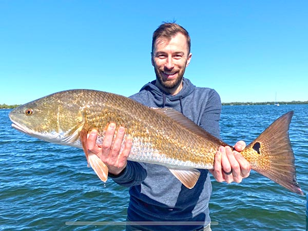 a picture of a fisherman holding a Tampa Bay redfish caught while on a Sarasota based fishing charter with Capt. Nate.