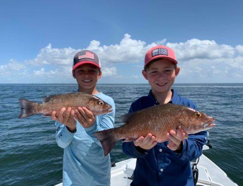 Quick Fact: Bradenton Area Snapper Fishing