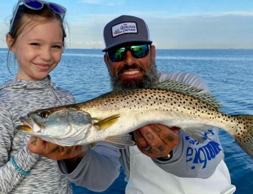 Doesn't Get Much Better: Fall Fishing Anna Maria Island